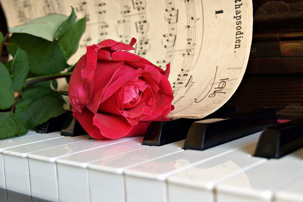 piano-ology-emotional-preparation-micro-lessons-featured-image-by-kate-cox-from-pixabay